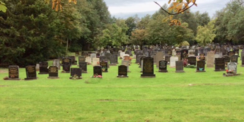 photograph of cemetery burial plots