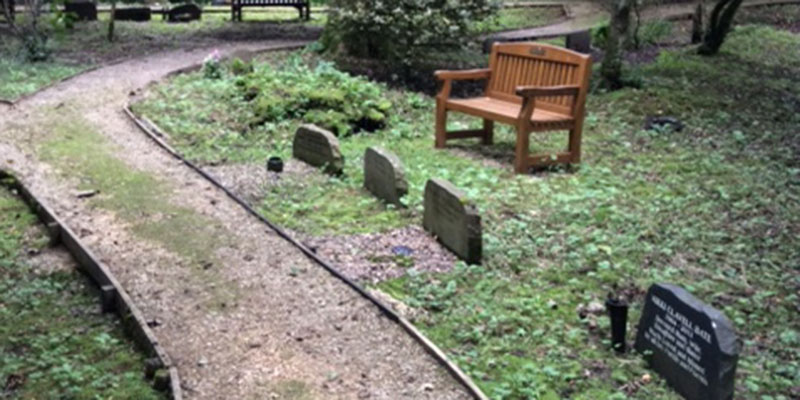 photograph of woodland area burial plots